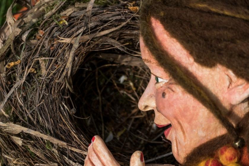Mein Nest ist meine Heimat
